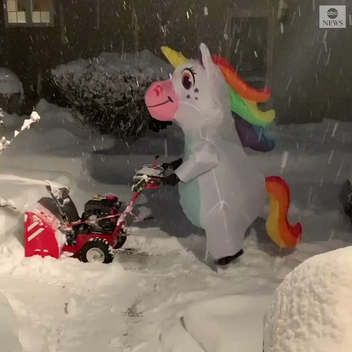 A New York woman dressed as a unicorn has made something as mundane as clearing snow from her driveway a little more magical!