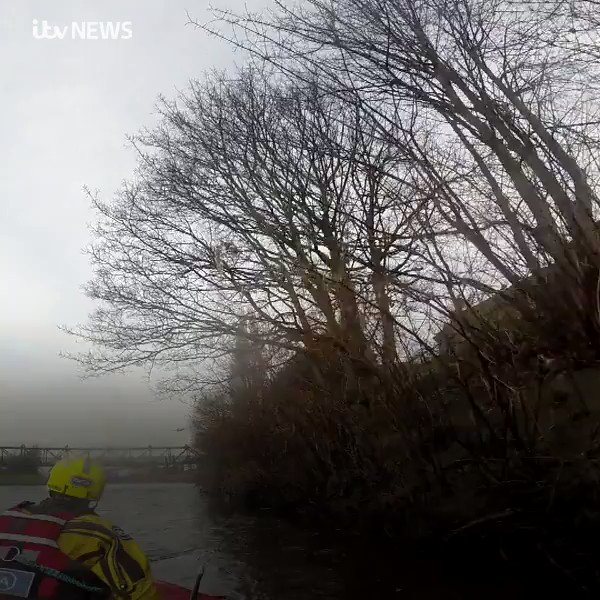 Four deer have been rescued by the RSPCA after they became trapped on the River Irwell. The deer was nicknamed Dasher, Prancer, Dancer and Blitzen by the rescuers. bit.ly/2ZjmErz