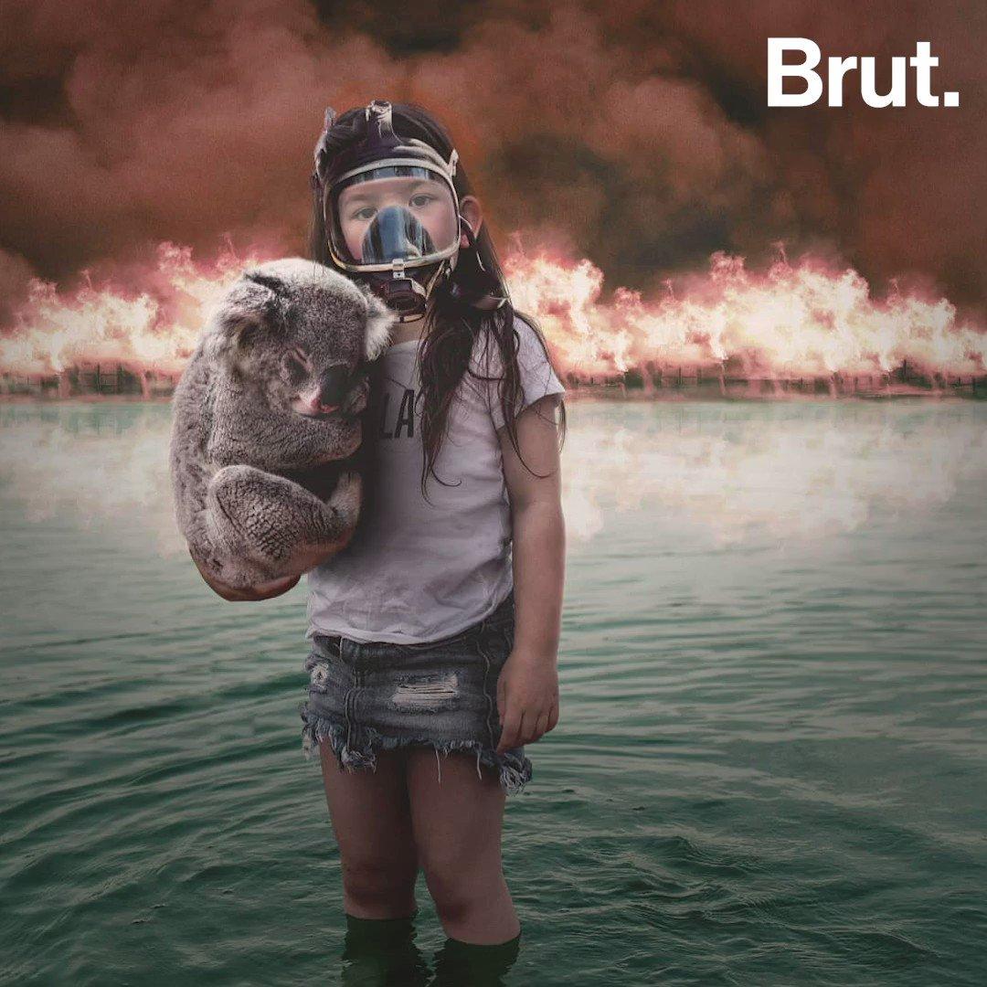 Incendies en Australie : Cette photo d'une fillette tenant un koala dans ses bras a ému des milliers d'internautes. Pourtant, elle n'est pas authentique…