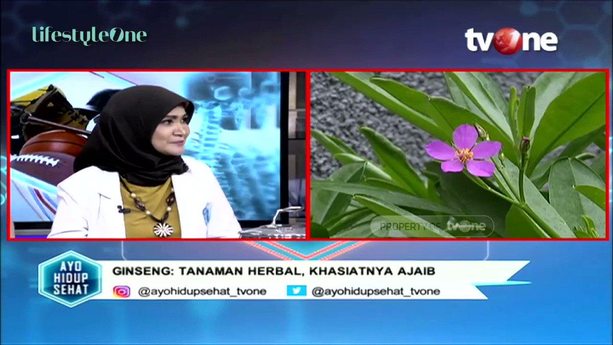 Halo sobat lifestyleOne! Ginseng merupakan tumbuhan rempah-rempah yang memiliki banyak manfaat loh, salah satunya yaitu dapat mencegah kanker. Simak pembahasannya di YouTube channel lifestyleOne! #tvOneNews #lifestyleOne #ginseng