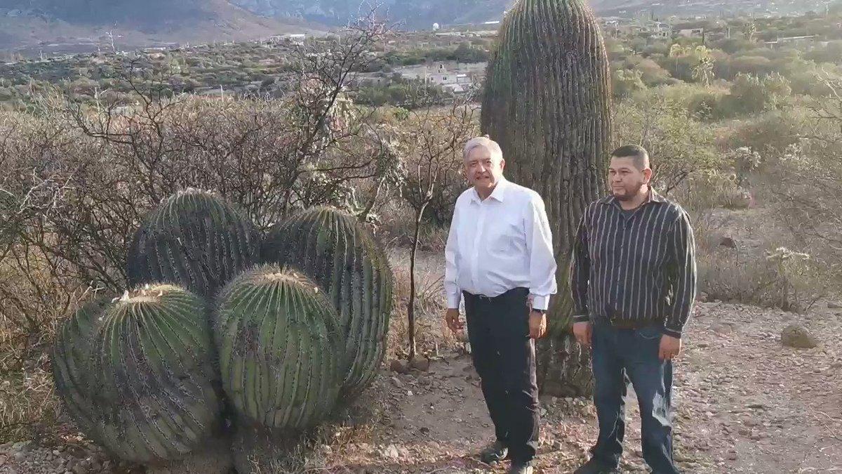 Una familia en Tierra Blanca, Guanajuato, ha conservado de generación en generación un parque natural de cactáceas.  Una belleza espectacular.