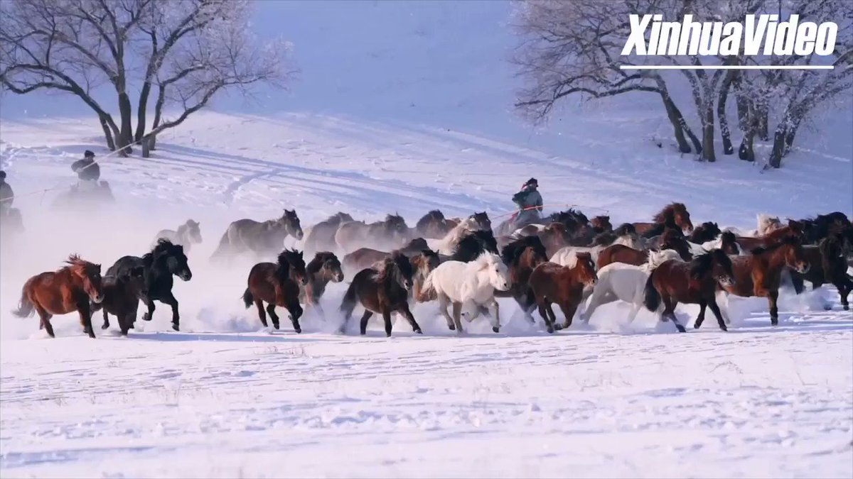 Hold your horse's peeps! And get ready for this spectacular ride across a snow-covered plateau in Inner Mongolia