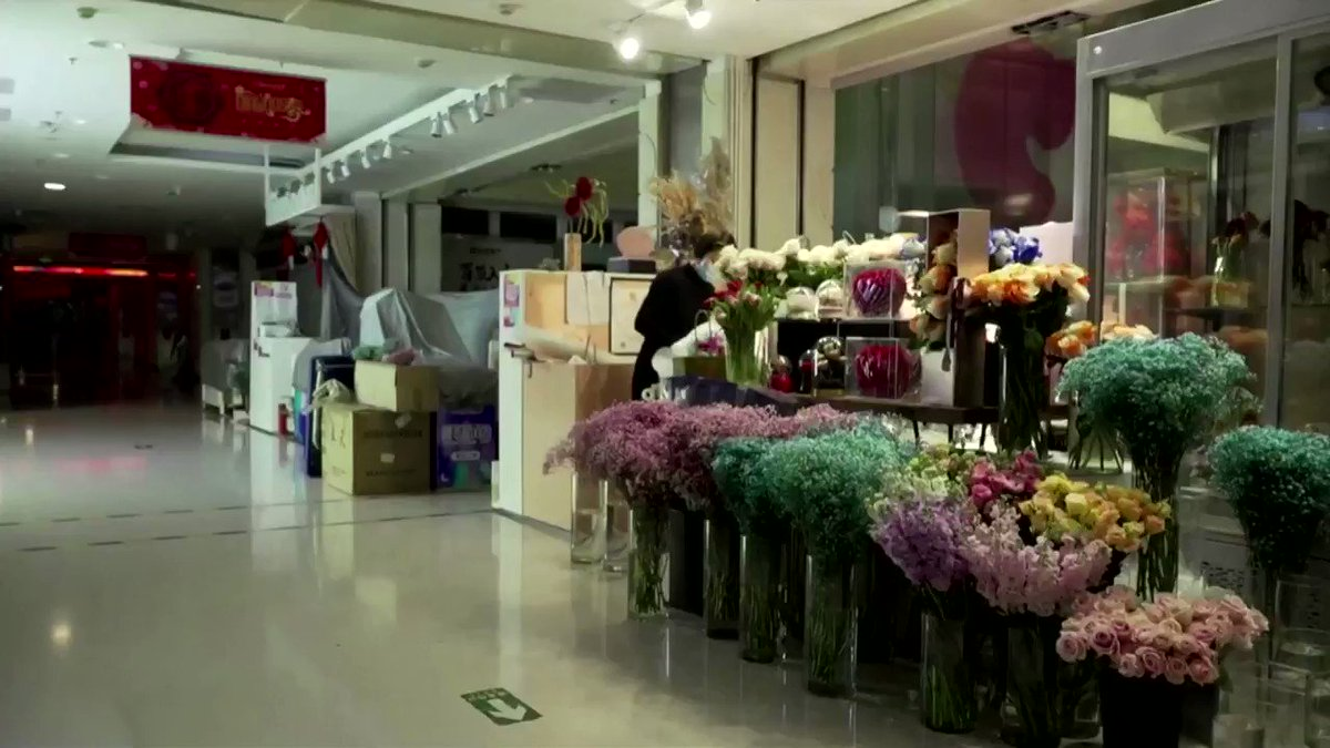 A florist in Beijing faces 90 percent drop in sales, as flower business suffers due to #coronavirus outbreak in China https://reut.rs/2UR0cG2