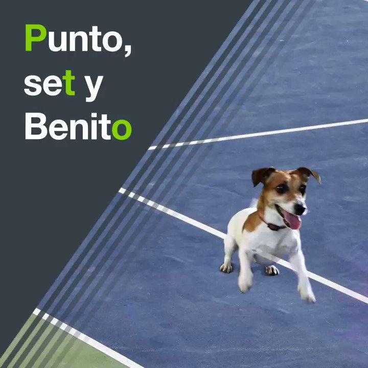 🎾 ¡Nadal juega en Acapulco esta semana! 🇲🇽 ¿Qué rivales tendrá enfrente? ⚔ ¿Cómo puede salir de reforzado de este torneo? 💪 ¡Todo te lo cuenta @alvarobenitolb!