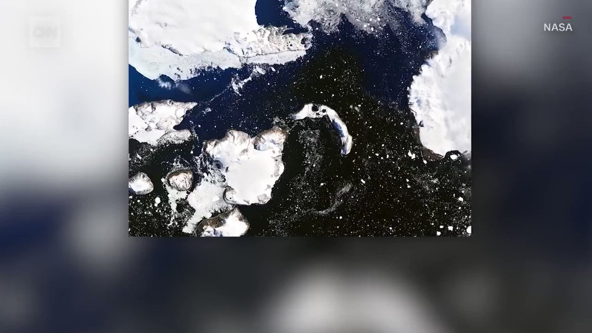A heat wave in Antarctica melted 20% of an island's snow in 9 days cnn.it/2I6gYt4