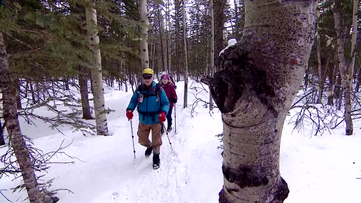 How will the park cuts impact users in Kananaskis? We went to find out. #ableg #abpoli #abparks