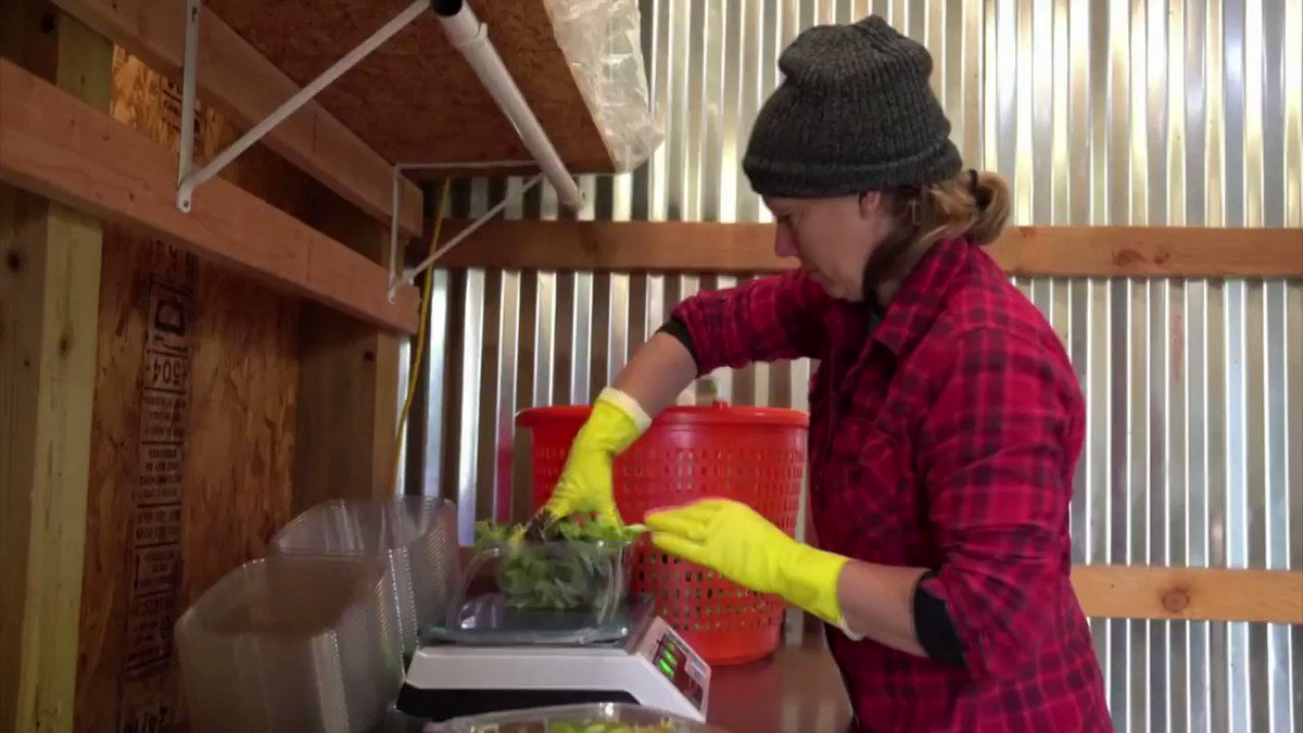 Farmers in rural America are adapting their businesses and delivering products at the doorsteps of their customers, who are practicing social distancing https://t.co/Z1PMFCL3Wp https://t.co/WJT2ffWeHo