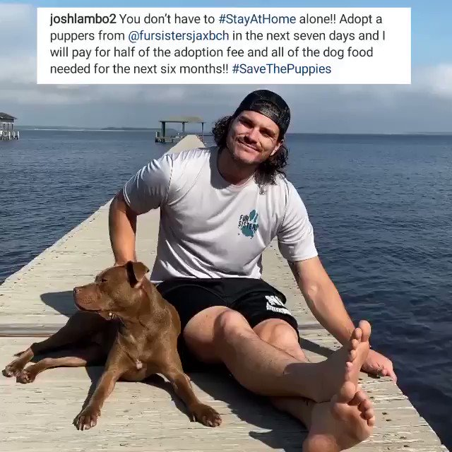 #StayHomeStayStrong while giving a dog a forever home. @JoshLambo | #DUUUVAL