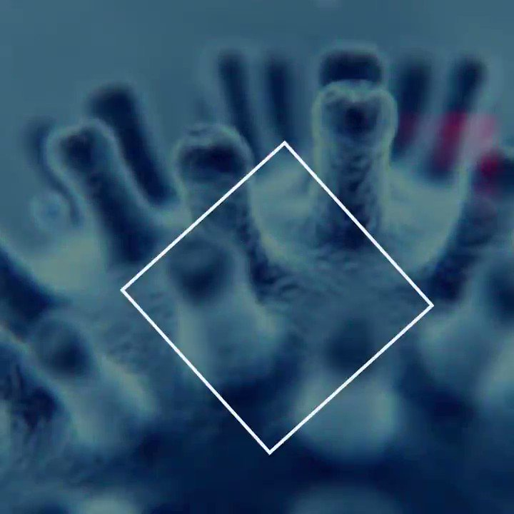 ¿Cómo puede evolucionar la pandemia del #coronavirus? ¿Cómo las medidas de distanciamiento podrán frenarla? Esto es lo que nos pueden decir sobre la situación actual estos proyectos de la UE:  https://ec.europa.eu/digital-single-market/en/news/forecasting-coronavirus-pandemic-help-eu-projects…  📽️ Vídeo @DSMeu