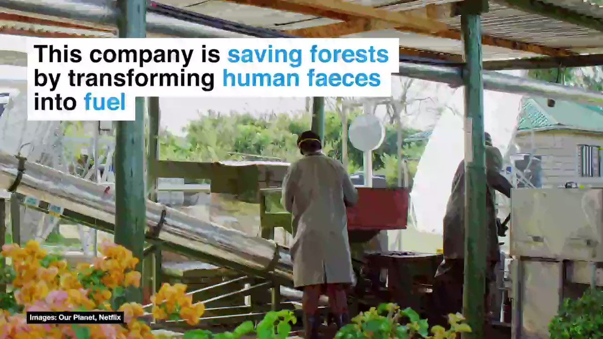 Were bringing you some #positivenews at this very difficult time. This innovative company in Kenya is fighting deforestation, preventing pollution and providing local jobs with a new eco-fuel made from human waste. 💩💪