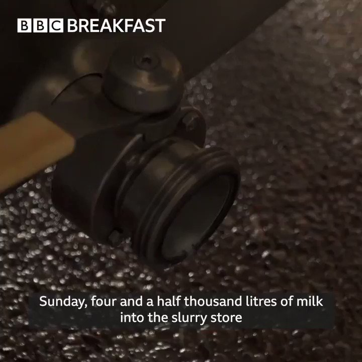 🥛🐄This dairy farm is throwing milk down the drain after orders from hotels and coffee shops have been cancelled ⤵️