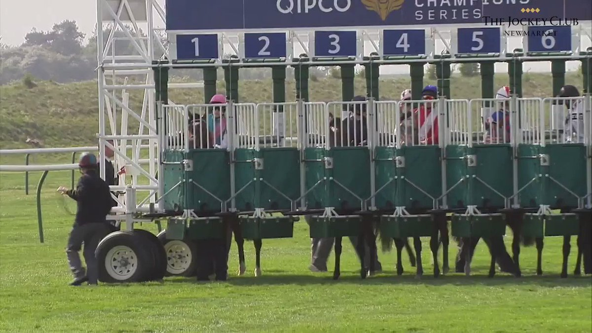 @Richard_Parker Who wouldnt want to go back and watch his 2000 Guineas win at Newmarket!?