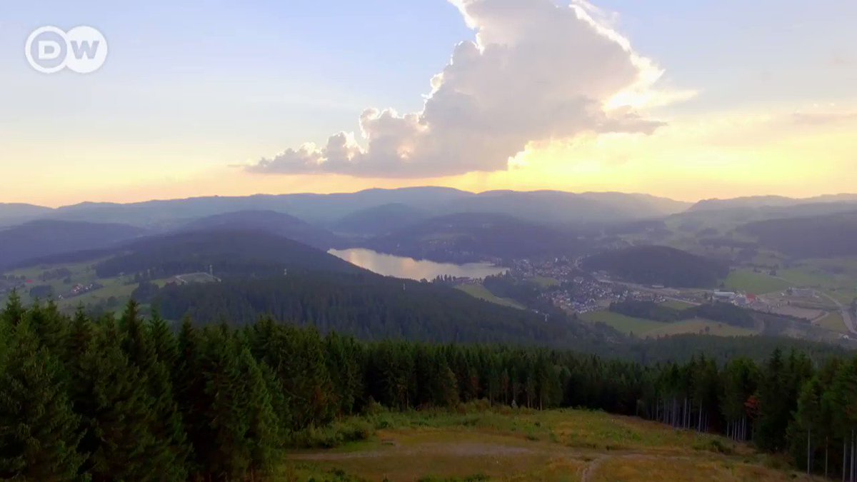 Image for the Tweet beginning: The Titisee is one of