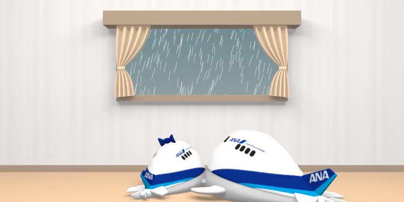 皆さん、こんばんは~🎶 今週もお疲れさまでした🌟 雨上がりに虹が見られたら、なんかいいことありそう🌈 #そらのすけ #ソラナ #梅雨