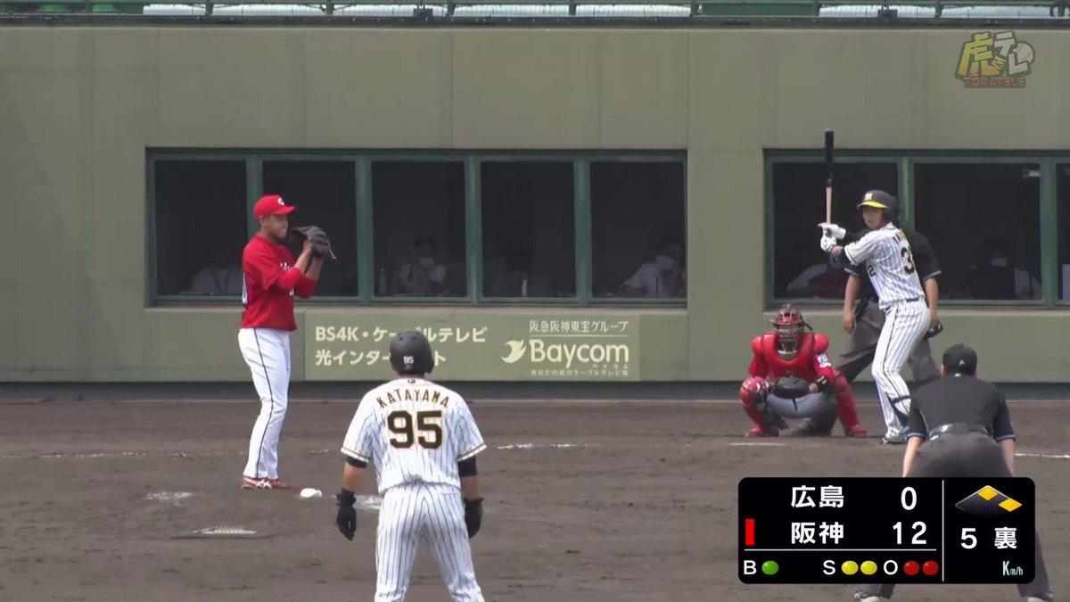 ルーキー躍動!井上もタイムリーヒット! #hanshin #虎テレ #阪神タイガース