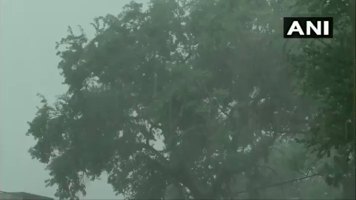 #WATCH Madhya Pradesh: Rain lashes parts of Bhopal.   India Meteorological Department (IMD) has predicted rainfall or thunderstorm for the city today. pic.twitter.com/851RJGxYzN