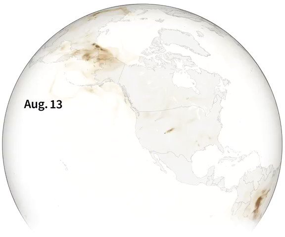 Smoke from the U.S. wildfires has traveled thousands of miles east, turning skies from New York to Washington D.C. hazy and reaching as far as the skies above the UK.  @ReutersGraphics visualizes organic carbon released into the atmosphere during the fires https://t.co/QxcE4zEpDp https://t.co/vghFJoLmUU