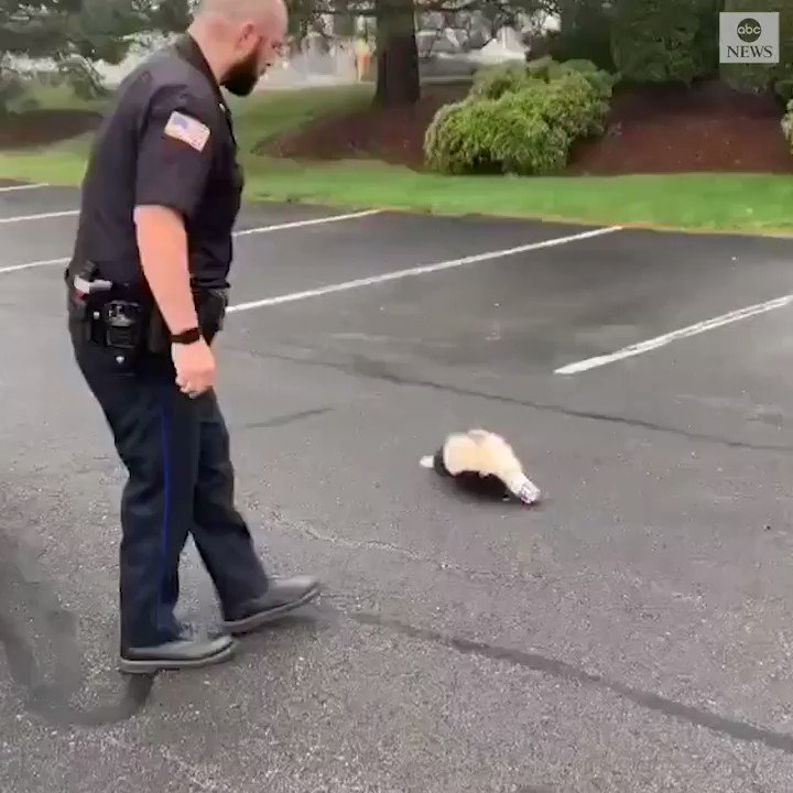 Image for the Tweet beginning: A Massachusetts officer successfully saved