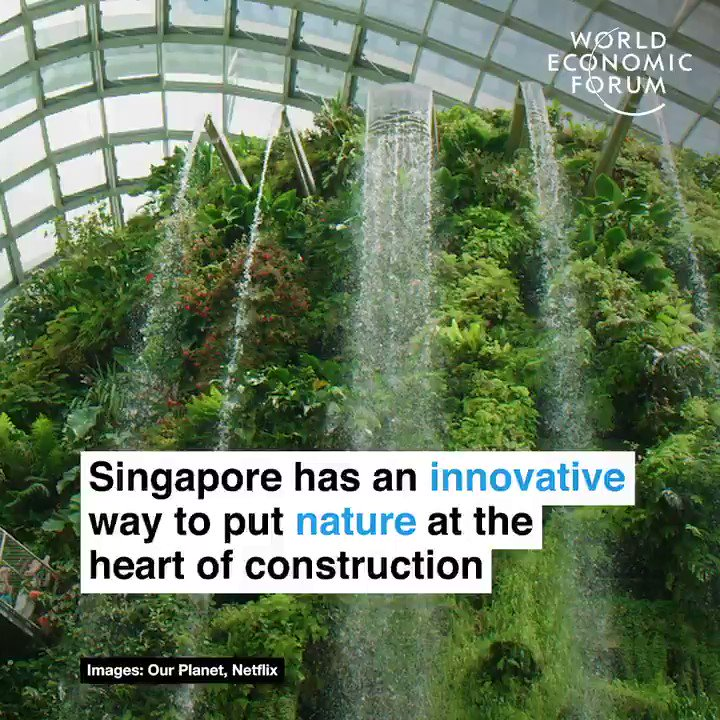 Have you heard of biophilic design? 📕 Read more: