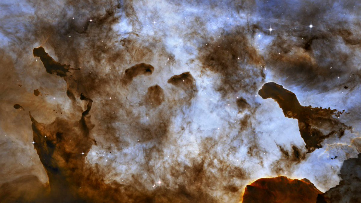 #HubbleClassic Explore dark pillars of cold gas in the Carina Nebula with this 3D visualization created from Hubble observations. Winds and radiation from massive stars in the nebula carve away at these clouds, creating bizarre, fantasy-like structures: go.nasa.gov/3iRKgeR