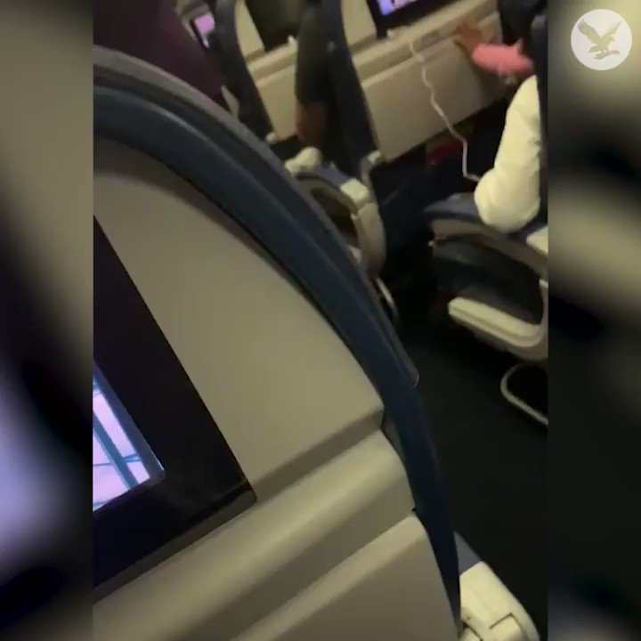 Woman kicked off plane after hitting flight attendant in the face