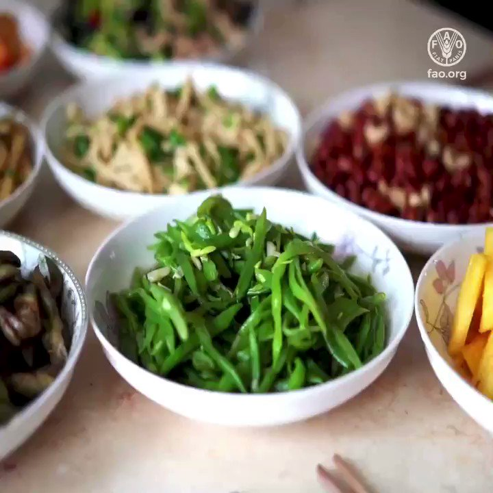 Plants are the food we eat and the air we breathe.   Without them there is no us!   Watch to find out how we can all support #planthealth  👇