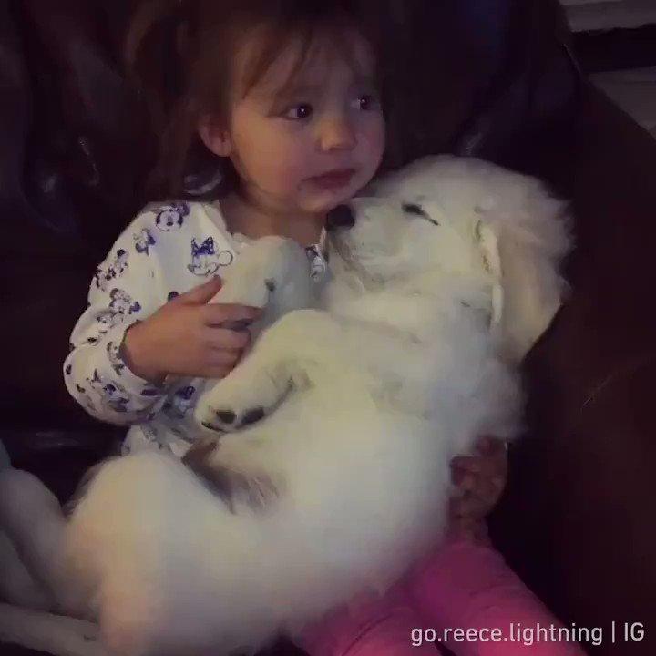 The purest love🥰  📹 go.reece.lightning | IG https://t.co/i5O6ROpVPL