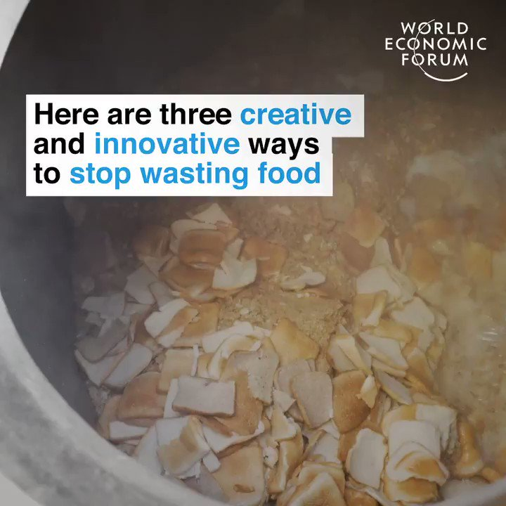 waste not want not (words to remember always but especially at #Thanksgiving) #EarthOptimism