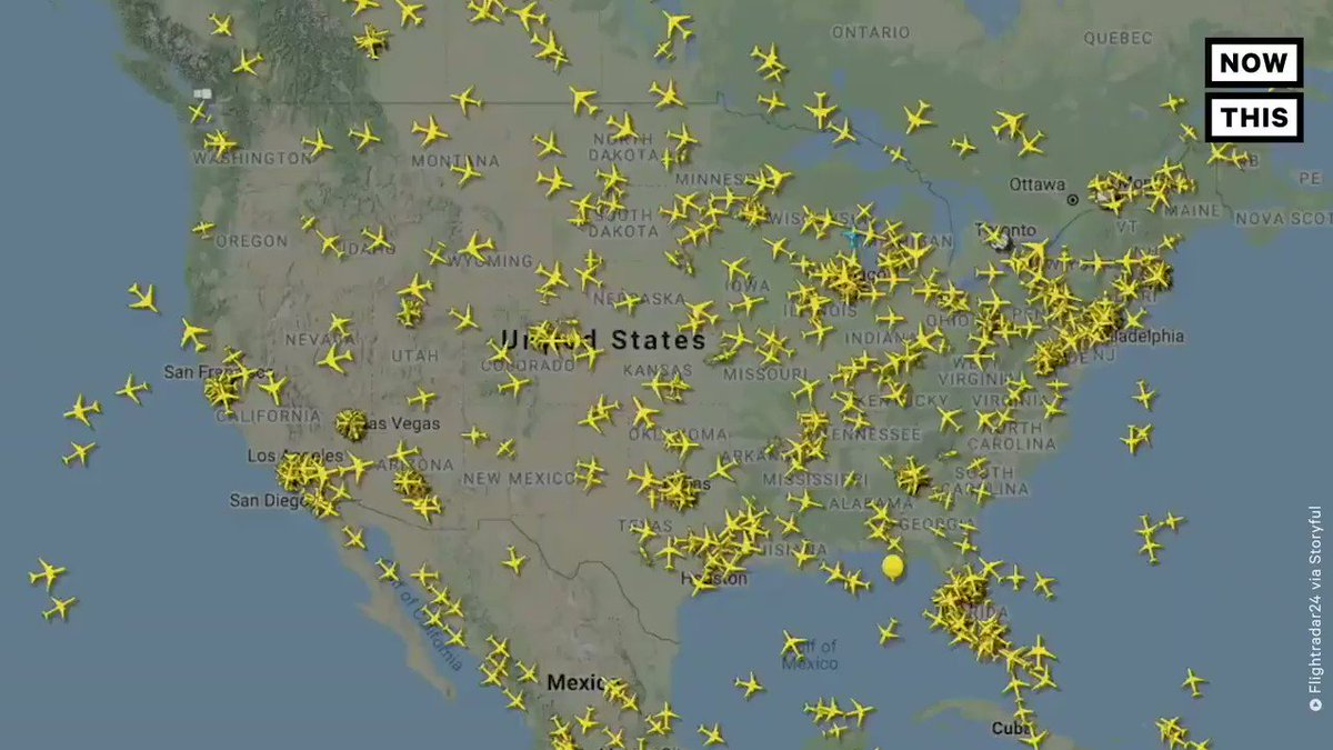 If you thought everyone had pretty much stopped travelling because of the pandemic, you're wrong. This is what air traffic looked like in America on Monday