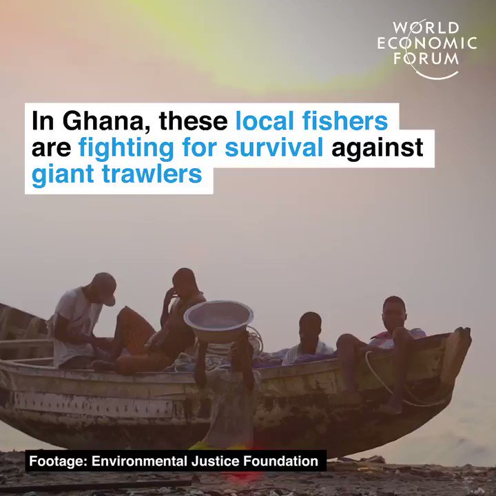 22% of the world's seafood harvest is stolen every year.   📕 Read more:    #WorldFisheriesDay #BoldActions4Food  RT @WEF