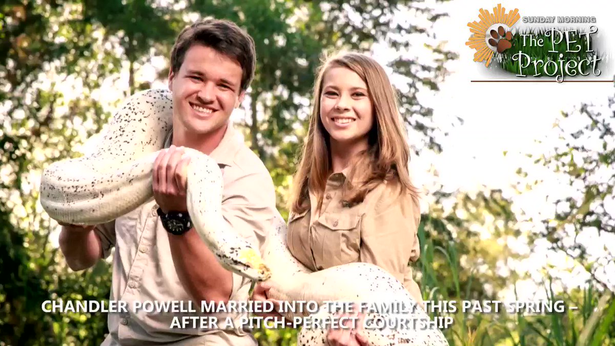 TONIGHT - #SundayMorning on Friday Night  Seth Doane talks with the family of Steve Irwin about continuing his life mission, a new member of their family, and about their unusual family business #sundaypets