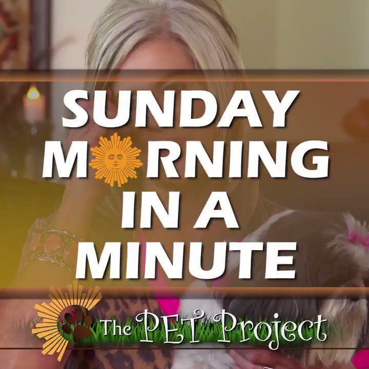 #SundayMorning in a Minute: Prime Time Edition   In case you were out walking your dog, here's what you missed