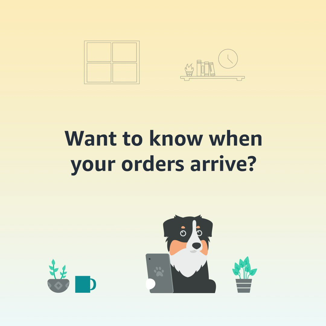Delivery notifications help you keep track of your order progress. Head to your notification settings in the Amazon App to turn them on:
