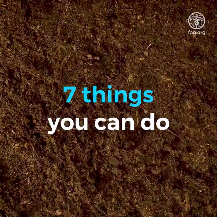 Soils host a 1/4 of our planet's biodiversity. Yet, soil pollution puts this at risk.   It starts by reducing #soils' biodiversity, which weakens the soil structure and its ability to resist erosion.  7 things you can do to stop soil pollution 👇  #WorldSoilDay #SoilBiodiversity