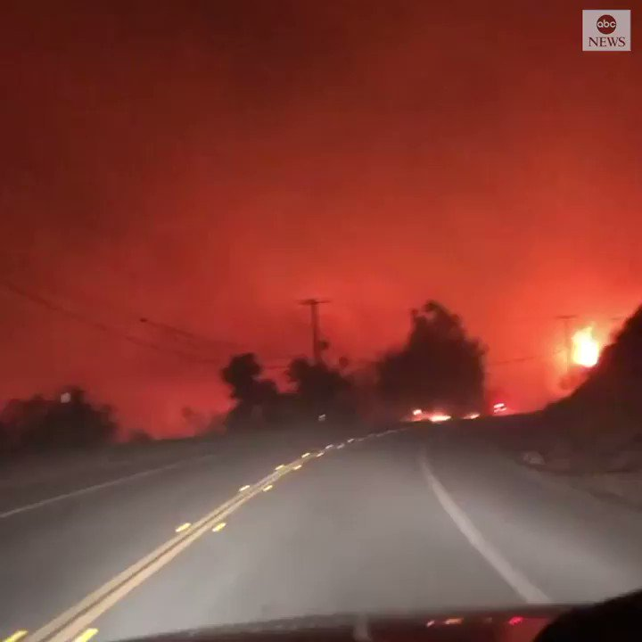 Dramatic video shows a man driving through Silverado, California, assisting in the evacuation of friends and livestock in the area as the Bond Fire torches the landscape on all sides.