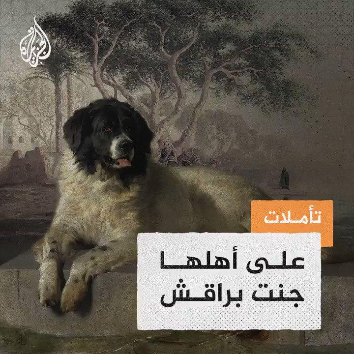 """#تأملات_الجزيرة - """"على أهلها جنت براقش"""" @Saleh_mass"""