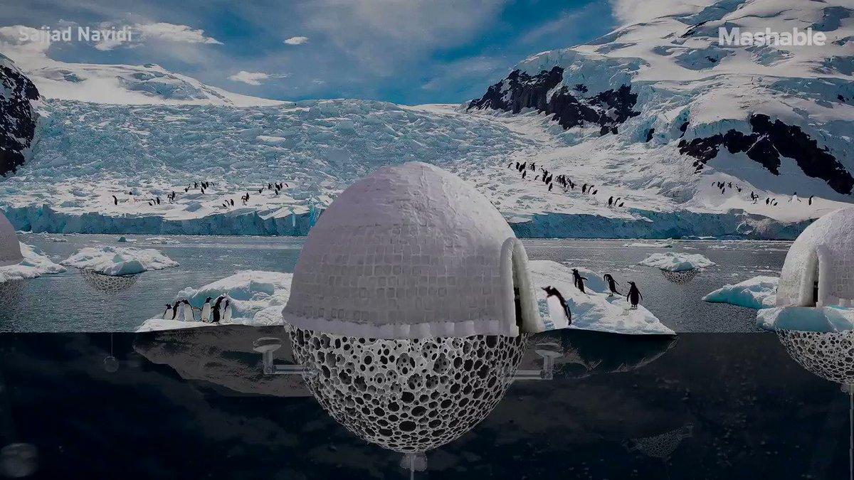 These high #tech igloos could one day help #penguins ❤️🐧 #ClimateAction #ClimateActionNow #ClimateCrisis #climate  @mashable /@PawlowskiMario @MargaretSiegien @abhishek__AI @arikring @Nicochan33