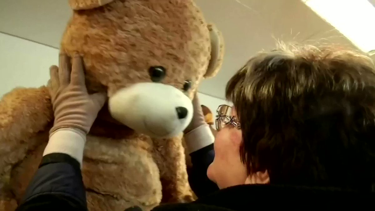 WATCH: Meet Hungary's record-breaking 'Teddy Bear Mama' who has collected more than 20,000 teddy bears