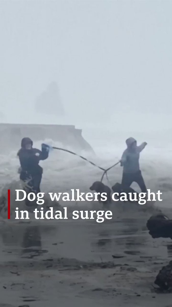 Two women surprised by a sudden tidal surge while walking their dogs