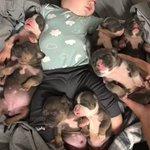 赤ちゃんと子犬の寝顔・かわいいが渋滞しまくっている!みんなまとめてかわいい