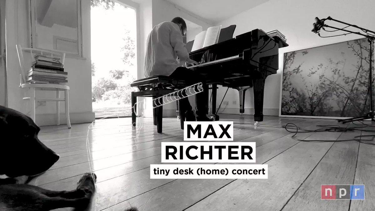 Watch all 17 minutes of Max's TINYD̶E̶S̶K̶ DOG session on on @NPRMusic 🐕🐕