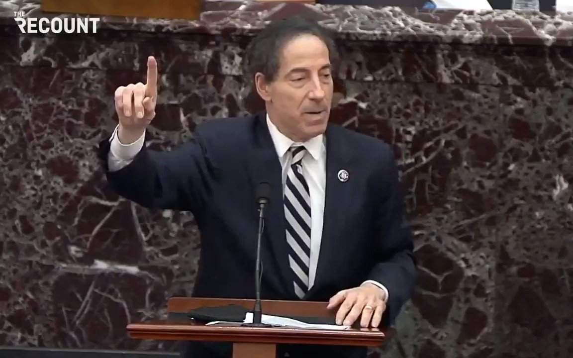 @therecount's photo on Jamie Raskin