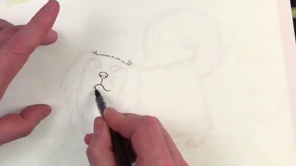 PAWsibly the best drawing, ever 🐶   Learn to draw man's best friend 🐕  →