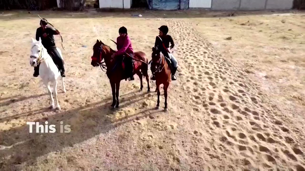 Mohammad Abu Musaed is training the first team of horseback archers in the Gaza Strip, in effort to revive a skill which once helped Mongol emperor Genghis Khan conquer much of Asia https://t.co/YbIMMHWjtX https://t.co/dURfNMRzLD
