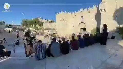 """من أمام باب العمود بالقدس المحتـ ـلة شبان ينشدون  """"طلع البدر علينا من ثنيات الوداع"""". #المسجد_الأقصى"""