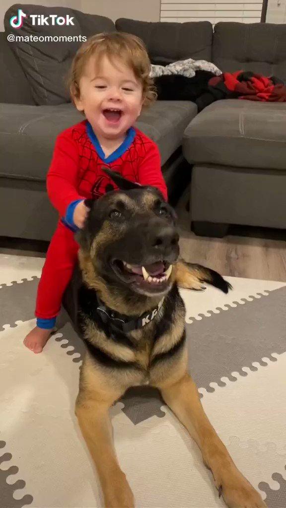 赤ちゃんと犬 https://t.co/6OjA3jH0W9
