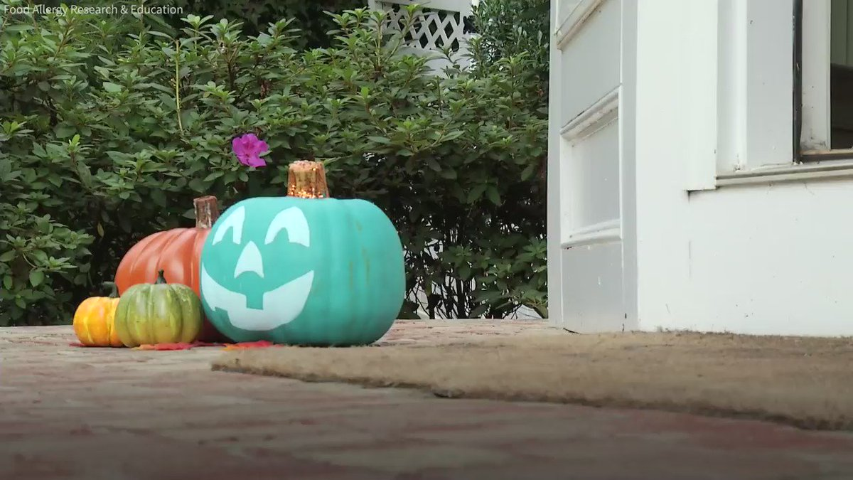 Here's what the TealPumpkinProject is and why it's important
