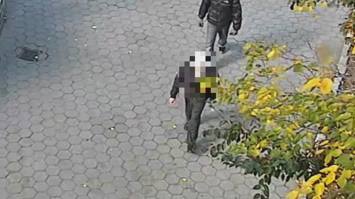 Elderly man punched in the head on UES
