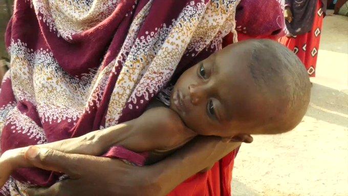La Somalie est de nouveau au bord de la famine