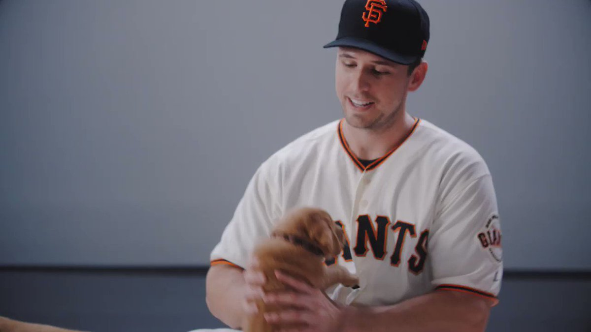 Ruff morning? We got you. 🐶 #NationalPuppyDay #SFGiants https://t.co/V...